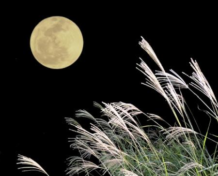 中秋の名月とは?十五夜とは?なぜ秋に月を見るのか?その謎に迫る?!