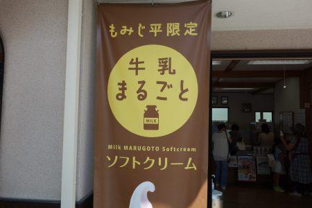群馬県立自然史博物館 食事を安く食べるお得な方法を紹介