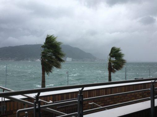 台風24号25号2018たまご 米軍台風情報 JTWCの読み方