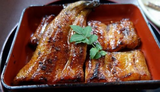 岡谷うなぎ水門の営業時間やメニューと食べてわかった3つのこと
